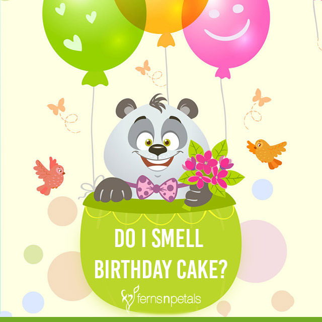 funny bday quotes