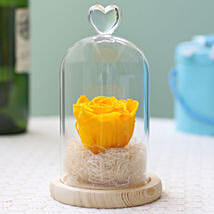 Forever Sunny Yellow Rose in Glass Dome: Gift Delivery in Argentina