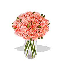 Pink Carnation: Get Well Soon Flowers to Australia