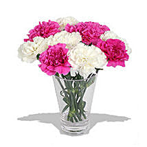 10 Pink n White Carnations in Vase: Send Gifts to Montreal