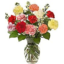 12 Multi color Carnations in Vase: Send Birthday Gifts to Toronto