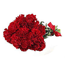 12 Red Carnations: Gift Delivery in Toronto