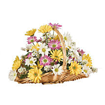 A Daisy A Day: Send Gifts to Toronto