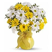 Bright Sunshine: Thinking of You Flowers in Canada