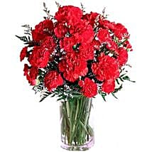 Carnation Delight: Gifts for Father to Canada