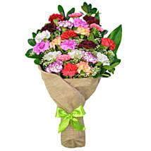 Cheerful Spirit Bouquet Of 24 Carnations: Send Gift to Canada Same Day Delivery