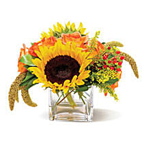 Country Sunflowers CND: Gift Delivery in Toronto