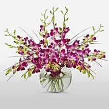 Purple Orchids in Vase: Valentine's Day Gift Delivery in Canada