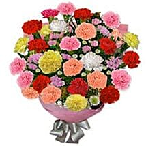 Carnation Carnival Fin: Gift Delivery in Finland