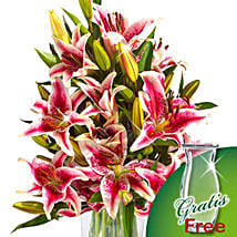 10 pink Stargazer Lilies in a bunch: Lilies to Germany