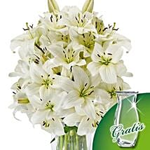 10 white lilies in a bunch: I Am Sorry Flowers to Germany