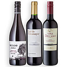 Fiesta Espana with 3 Bottles of Wine: Send Gifts to Berlin