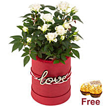 White Roses In Love Pot And Chocolates: Valentine's Day Gifts to Germany