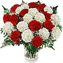 Carnation Fascination Gre: Business Gifts to Greece