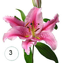 3 Lilies of Affection KU: Send Anniversary Flowers to Kuwait
