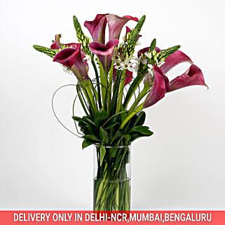 12 Exotic Peregrine Purple Calla Lilies 9 White Ornithogalum in Glass Vase:
