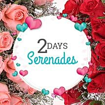 2 Days Magnificent Celebration: Valentines Day Serenades