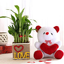 2 Layer Lucky Bamboo In Love Vase With Teddy Bear: Send Valentines Day Soft toys