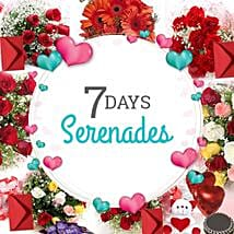 7 Days Valentine Week full of Love: Valentines Day Serenades