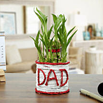 A Lucky Gift For Father: Birthday Gifts for Father