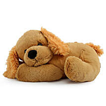 Adorable Cuddly Puppy: Romantic Soft toys