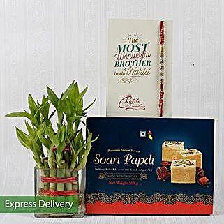 Bamboo Plant Rakhi Combo: Rakhi Express Delivery