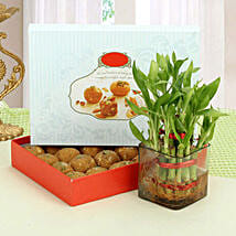 Besan Laddoo with Luck: Fathers Day Sweets