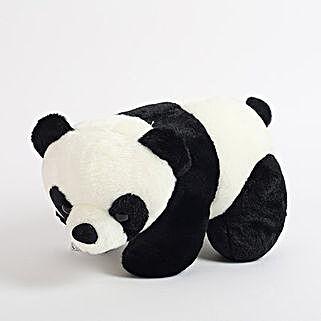 Black N White Panda: Gifts for Girls