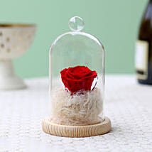 Classic- Forever Red Rose In Glass Dome: Send Flowers to Buldhana