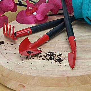 Easy To Use Gardening Tools: Gifts to Rewari