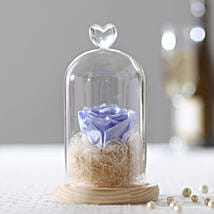 Forever Lavender Blue Rose In Glass Dome: Flower Delivery in Etah