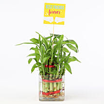 Friends Forever Two Layer Bamboo Plant:
