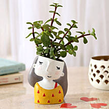 Jade Plant In Yellow Shy Girl Raisin Pot: Valentine Gifts Lucknow