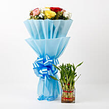 Mixed Roses & Two Layer Lucky Bamboo Combo: Send Flowers to Rudrapur