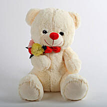 Mushy Teddy Bear: Send Gifts to Udhampur