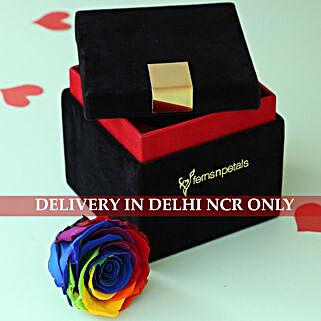 Mystic Rainbow- Forever Rose in Velvet Box: Roses