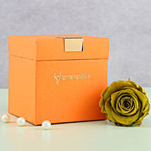 Olive Green Forever Rose in Orange Box: Send Flowers to Kurnool
