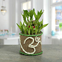 Om Two Layer Bamboo plant: Diwali Gifts for Family