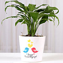 Peace Lily Plant With Promise Love Birds Mug: Flowering Plants