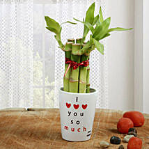 Personalized Love Bamboo: Lucky Bamboo to Pune