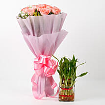 Pink Roses & Two Layer Bamboo Plant Combo: Send Flowers to Rudrapur
