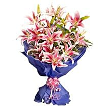 Pink Stargazer Lilies: Lilies to Lucknow