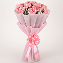Pretty Pink Carnations Bouquet: Flowers to Puducherry
