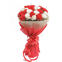 Red N White Carnations: Send Flowers to Margoa