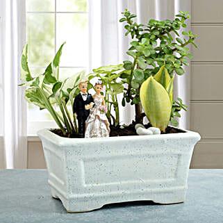 Romantic Dish Garden: Wedding Gifts
