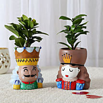 Set of 2 Ficus Compacta In King Queen Pots: Valentine Gifts Lucknow