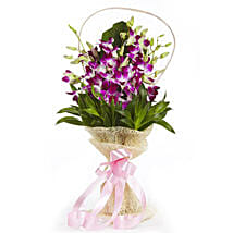 Simply Sweet: Orchids