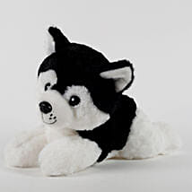 Small Dog Soft Toy Black: Soft Toys Gifts