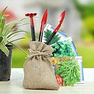 Special Herbs Hamper: