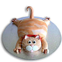 Tabby Cat Cake: Cakes for 2Nd Birthday